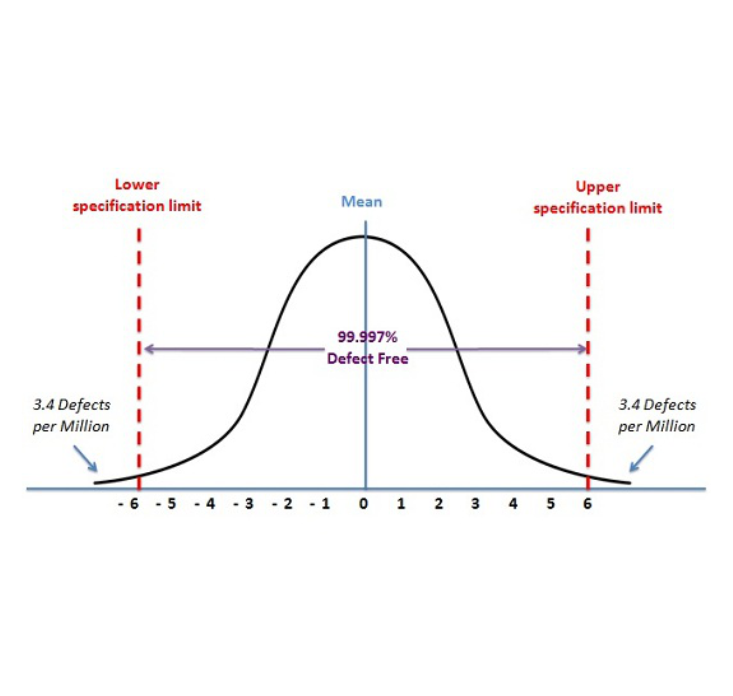 Distribution Curve